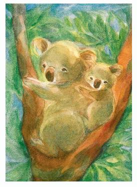 Kaart Koalabären van Marie-Laure Viriot