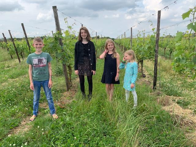 kids betuws wijndomein