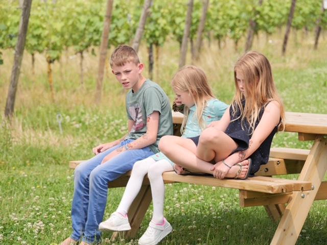kids tijdens wijndomein wandeling
