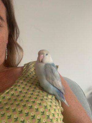 met pip op mijn schouder