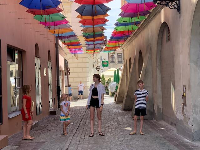 paraplu tarnow