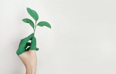 Vier hulpmiddelen waarmee je energie kunt besparen